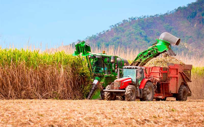 Plano Safra empresta R$ 108,5 bilhões de julho a dezembro de 2019
