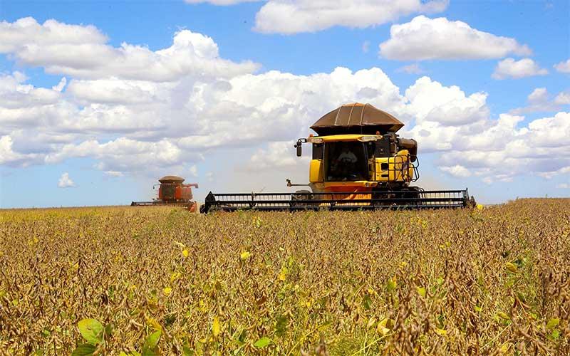 Valor da produção agrícola foi recorde em 2019 e atingiu R$ 361 bi
