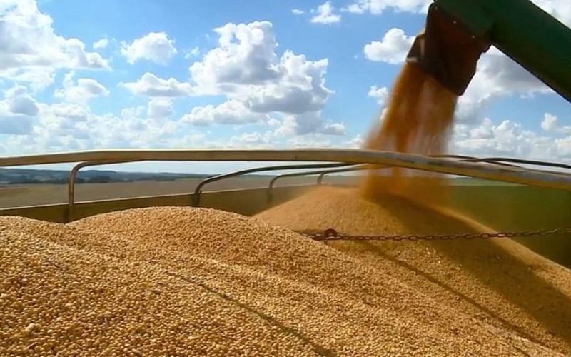 Produção de grãos deve chegar a 268,3 milhões de toneladas, diz Conab
