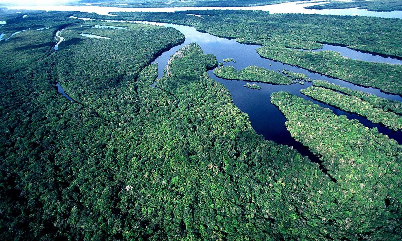 MMA assina acordo de adoção de parque localizado no Amazonas